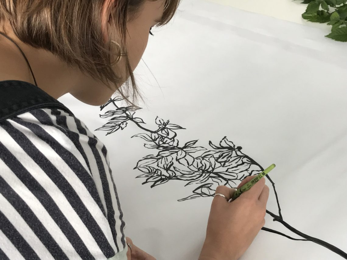 séance de dessin à l'encre noire d'après des branches de magnolia. Ligne + aplat.